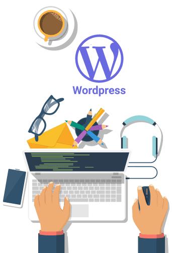 Olvi Technology Hire WordPress Developer